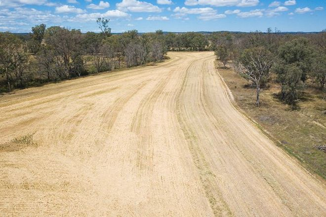 Picture of 7883 Toowoomba-Karara Road, KARARA QLD 4352