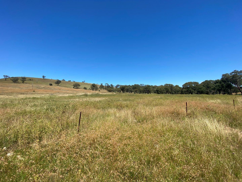 69 Campbells Creek Road, Mudgee NSW 2850, Image 1