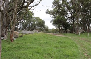 Picture of 2875 Mount Lindesay Road, Tenterfield NSW 2372