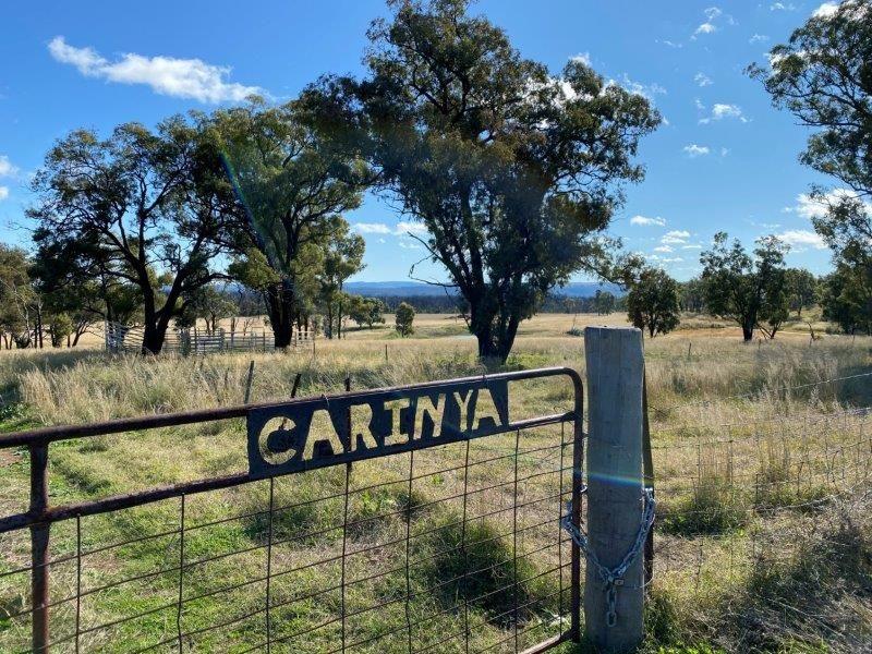 550 Cainbil Road, Coolah NSW 2843, Image 1