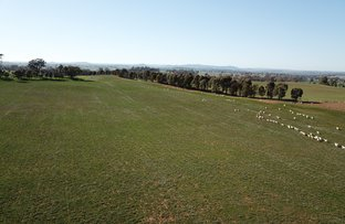 Picture of Stapletons Road, Molong NSW 2866