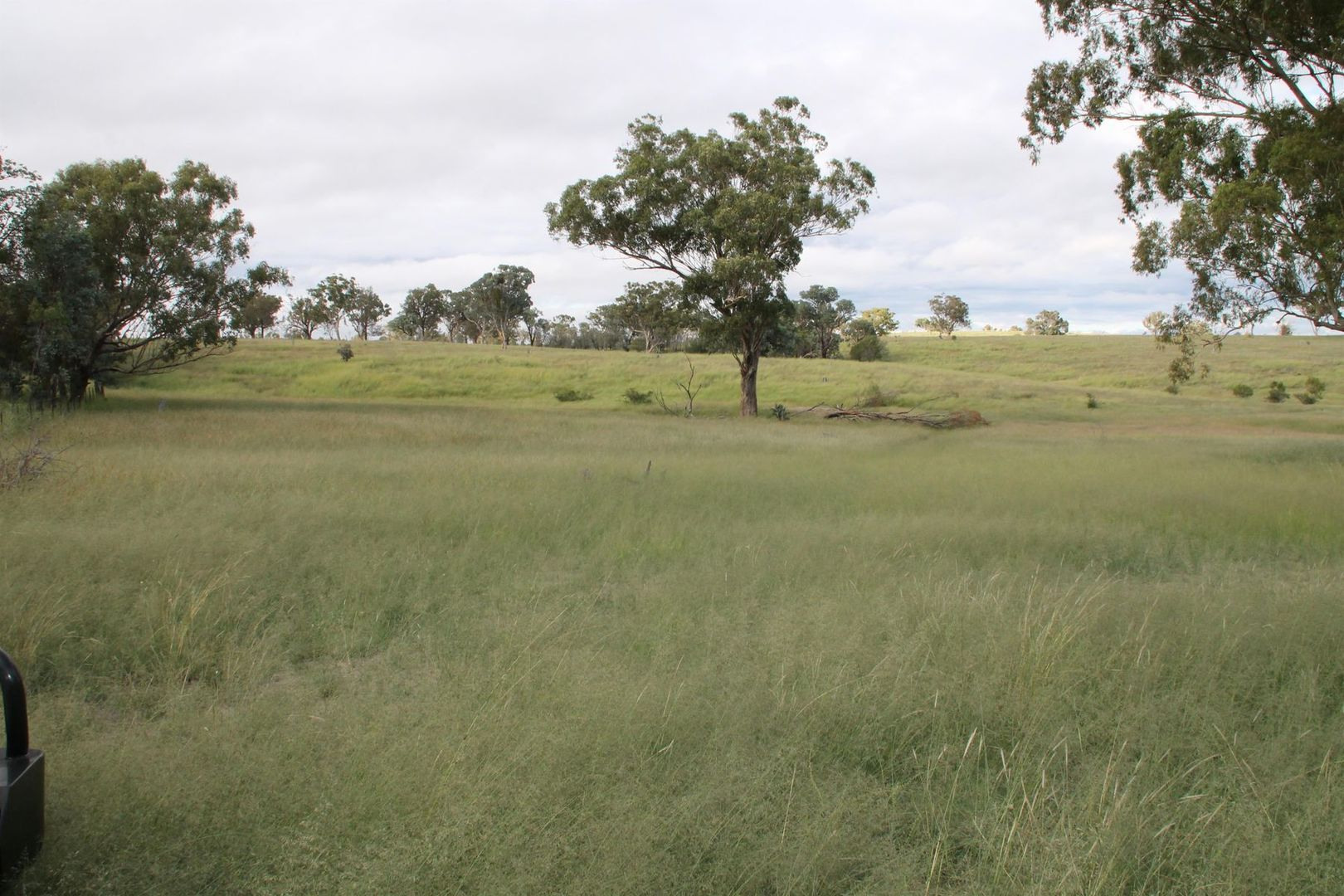 Lot 2 Mole Station Road, Tenterfield NSW 2372, Image 1