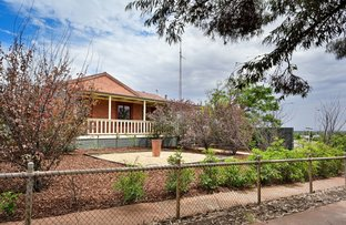 Picture of 225 Lacey Street, Whyalla Playford SA 5600