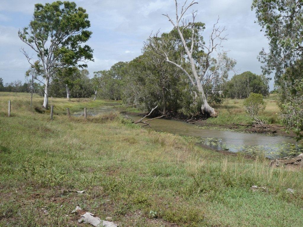 425 Three Chain Road, Calavos QLD 4670, Image 2