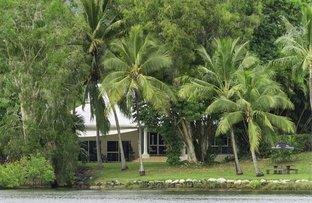 Picture of 113 St Crispins Avenue, Port Douglas QLD 4877