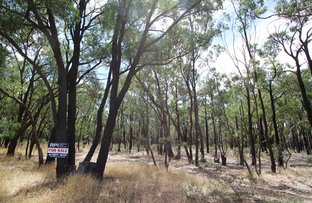 Picture of 26B Lewis Road, Ladys Pass VIC 3523
