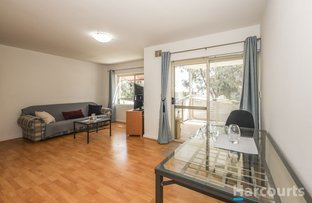Picture of 11/24 Theseus Way, Coolbellup WA 6163