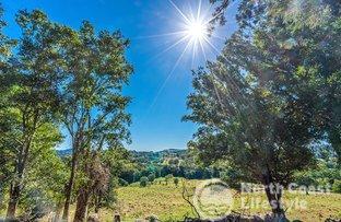 Picture of 249 Wilsons Creek Road, Wilsons Creek NSW 2482