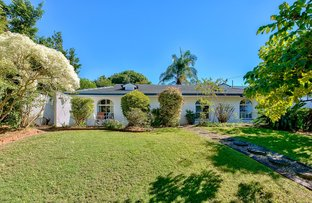 Picture of 3 Denning Street, The Gap QLD 4061