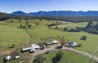 Picture of 347 Hydes Creek Road, Bellingen NSW 2454