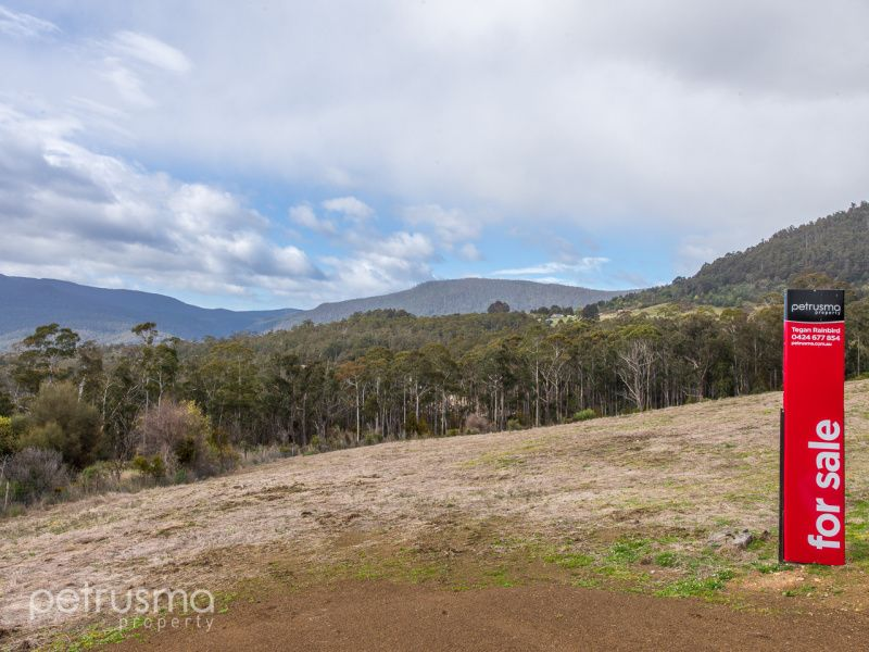 Lot 3 Moss Beds Road, Lachlan TAS 7140, Image 0