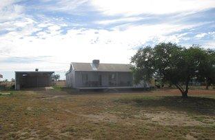 Picture of 334 Bassett Lane, Roma QLD 4455