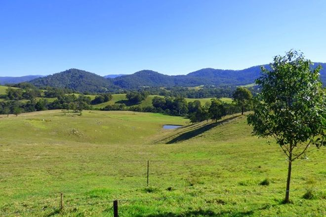"""Picture of 616 """"Wattle Hill"""", WYNDHAM NSW 2550"""