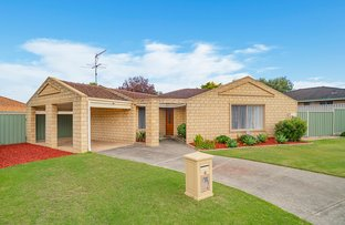 Picture of 7 Kelp Place, Geographe WA 6280
