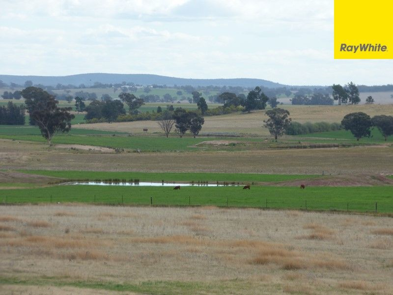 Lot 2 Allens Road, Forbes NSW 2871, Image 1