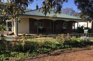 Picture of 25 - 27 Queen Street, Barmedman NSW 2668