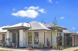 Picture of 15 Rockgarden Way, Wollert VIC 3750