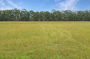 Picture of Lot 125 Greenbridge East, Wilton NSW 2571