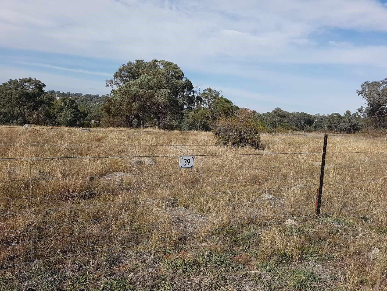 39 Queen Street, Molong NSW 2866, Image 2
