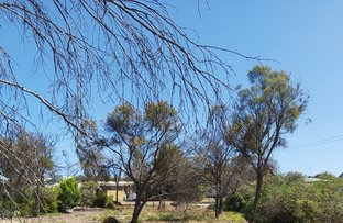 Picture of 2 Mistletoe Drive, The Pines SA 5577