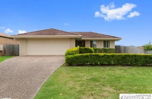 Picture of 77 COLLINS STREET, Collingwood Park QLD 4301