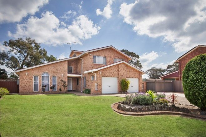 Picture of 13 Lawson Place, BARDEN RIDGE NSW 2234