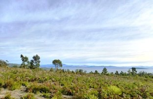 Picture of 294 Heathy Hill Drive, Saltwater River TAS 7186