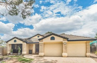 Picture of 6 Cheltenham Place, Forest Lake QLD 4078