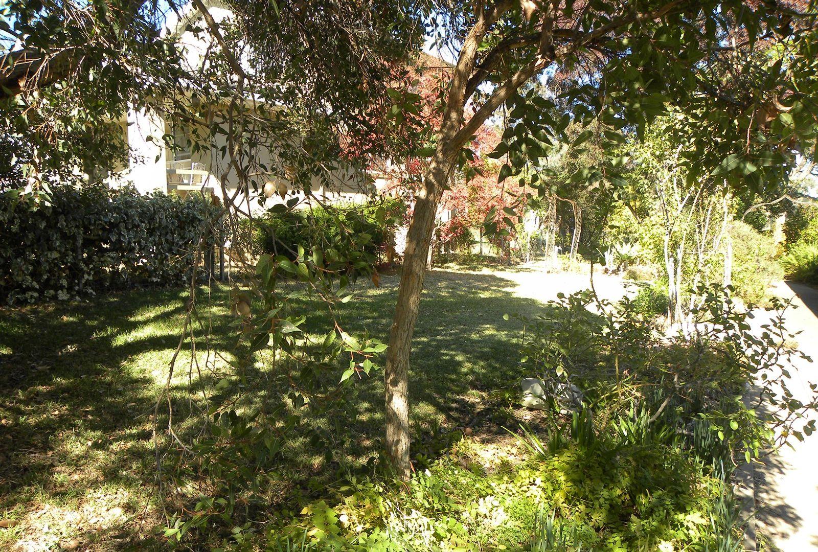 33 Macassar Street, Cowra NSW 2794, Image 2