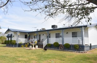 Picture of 148 Tarrawingee Road, Moree NSW 2400