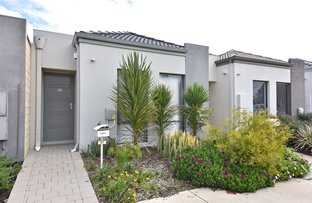 Picture of 57 Fairbourne Approach, Butler WA 6036