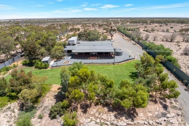 Picture of 53 Boy Scout Road, BLANCHETOWN SA 5357
