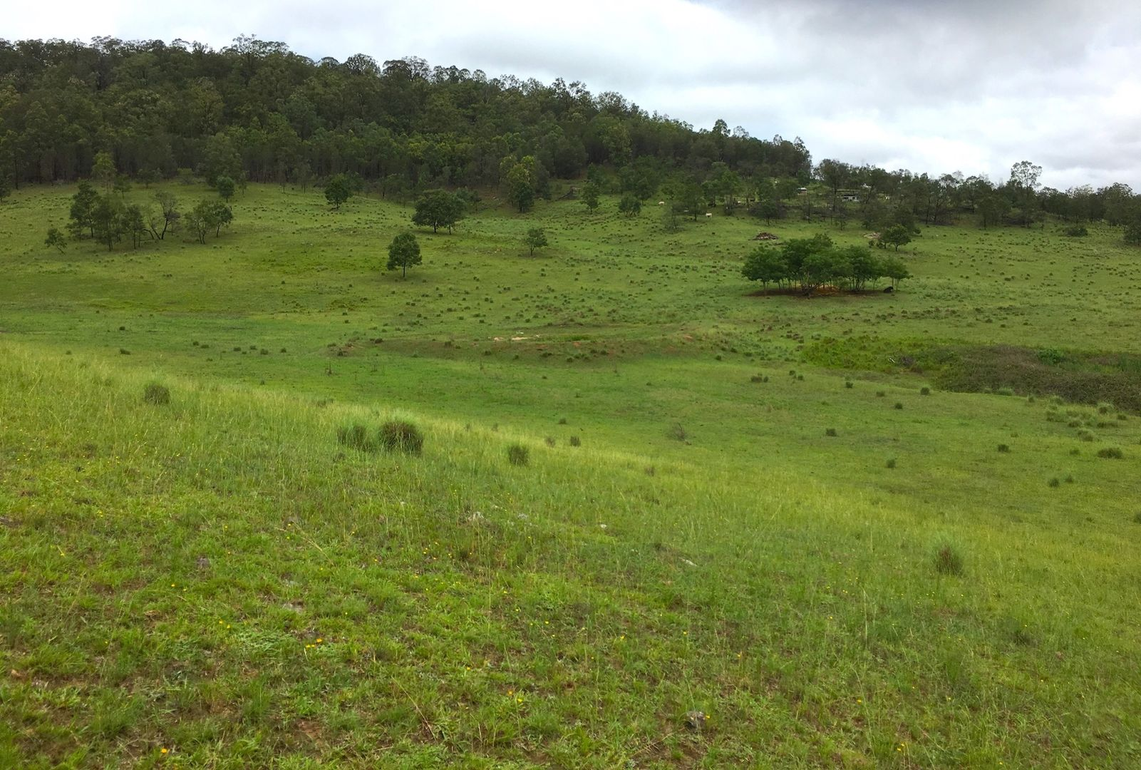 Lot 102 Putty Road, Howes Valley NSW 2330, Image 2
