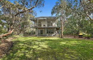 Picture of 11 Sixth Avenue, Anglesea VIC 3230
