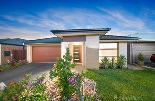Picture of 14 Aminya  Drive, Clyde North VIC 3978