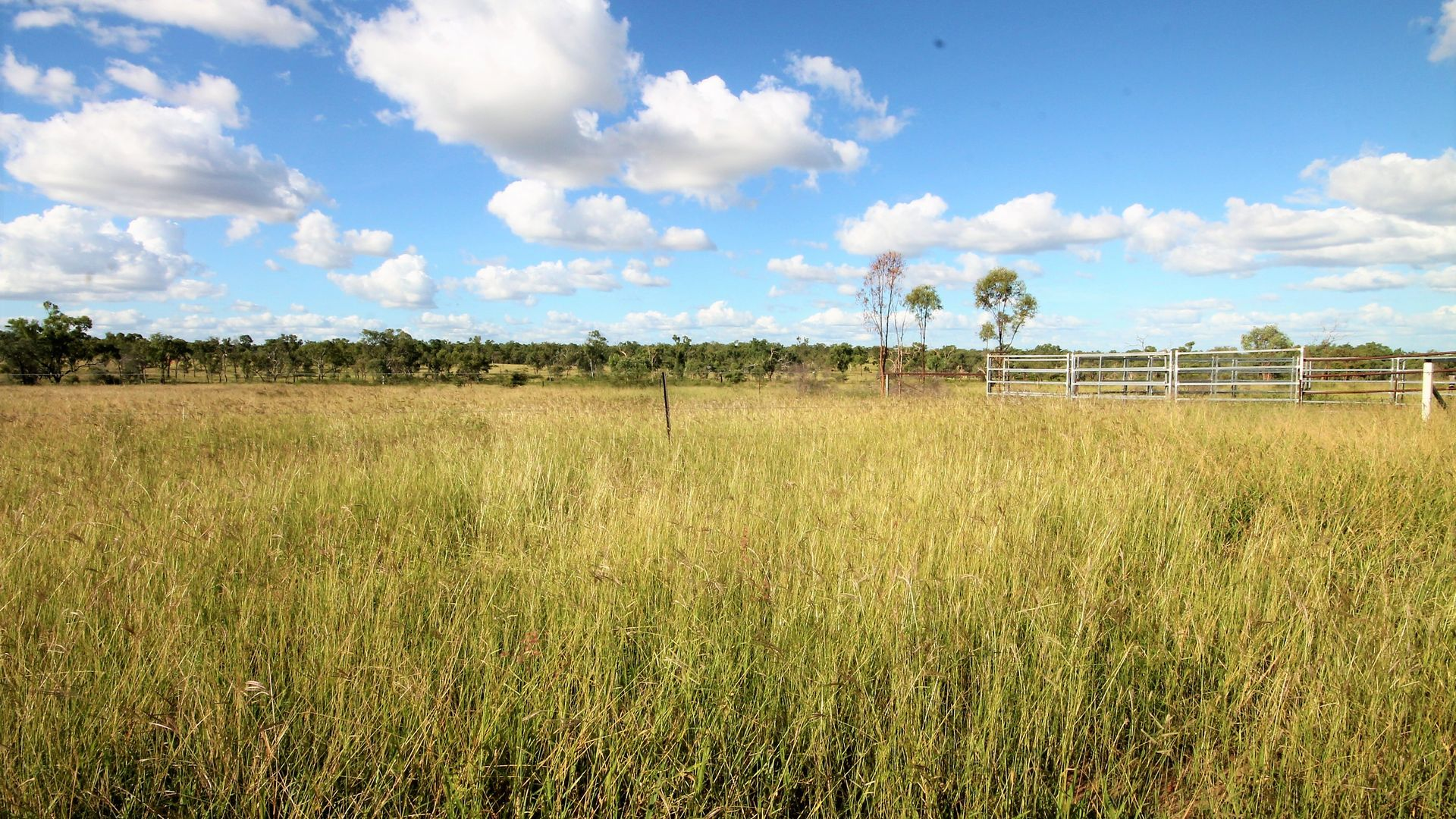 216 Hulls Road, Broughton QLD 4820, Image 2