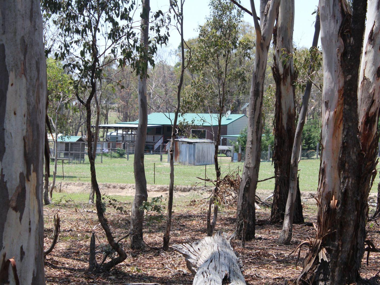 1546 Torrington Road, Stannum, Glen Innes NSW 2370, Image 2