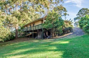 Picture of 5 Sirius Court, Molendinar QLD 4214