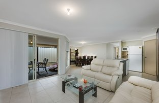 Picture of 11 Bliss Way, Clarkson WA 6030