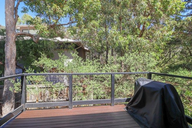Picture of 101/96 Bussell Highway, MARGARET RIVER WA 6285