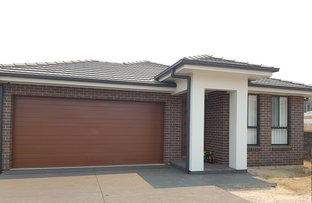 Picture of Lot 441 Hacking Drive, Narellan Vale NSW 2567