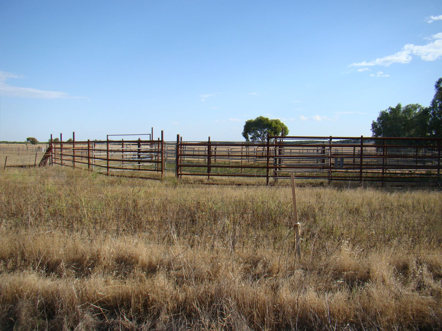 Lot 6 Mt Horner Road West, Yardarino WA 6525, Image 0