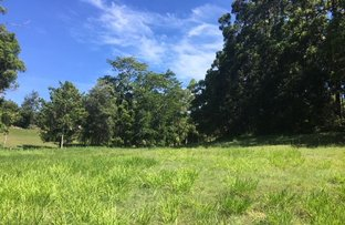 Picture of 749 Diddillibah Road, Diddillibah QLD 4559