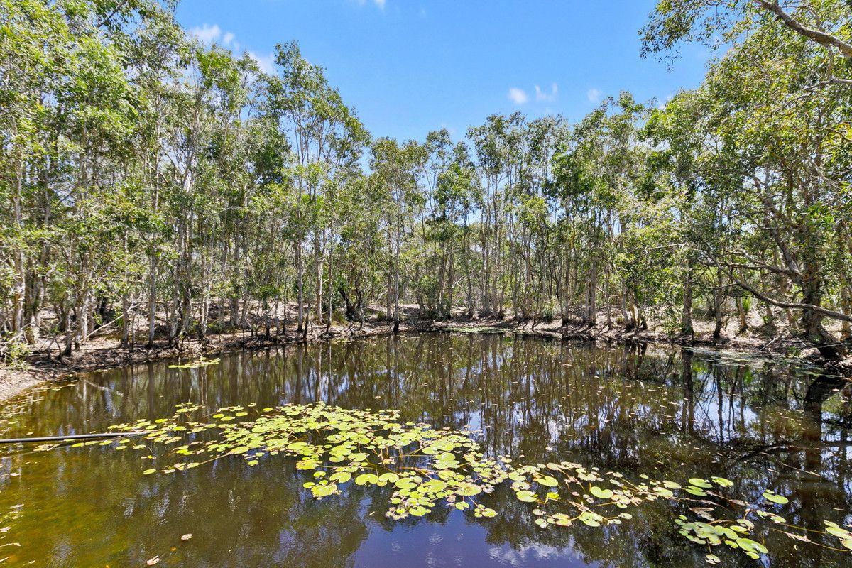 199 Moorabinda Drive, Sunshine Acres QLD 4655, Image 2