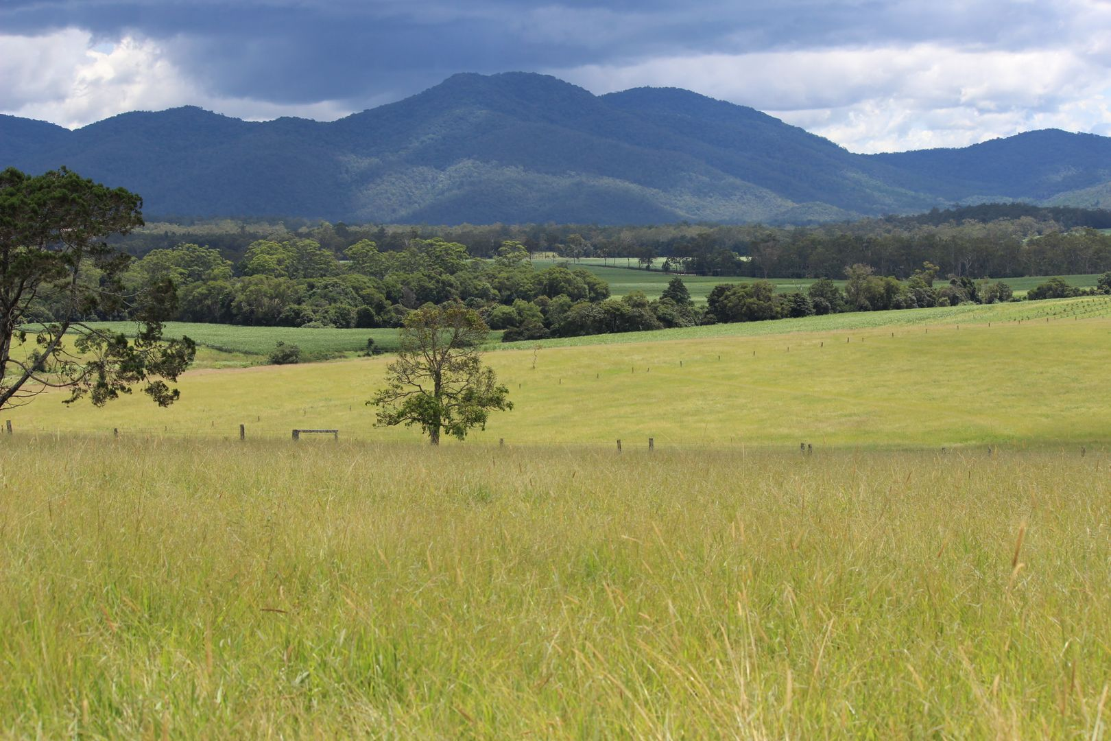 'HILLVIEW' FOR SALE BY AUCTION 20th MAY 2021, Upper Barron QLD 4883, Image 1