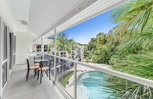 Picture of 238/305-341 Coral Coast Drive, Palm Cove QLD 4879
