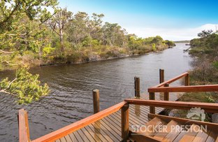 Picture of 3 Dunkley Close, Molloy Island WA 6290