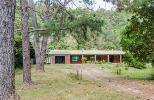 9 Bindaree Place, Chillingham NSW 2484