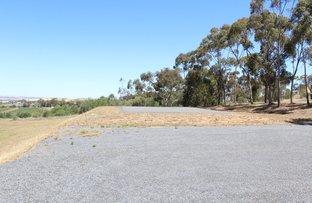 Picture of Lots 6 & 7 West Terrace, Leasingham SA 5452