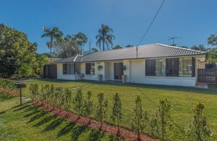 Picture of 55 Botticelli Street, Fig Tree Pocket QLD 4069